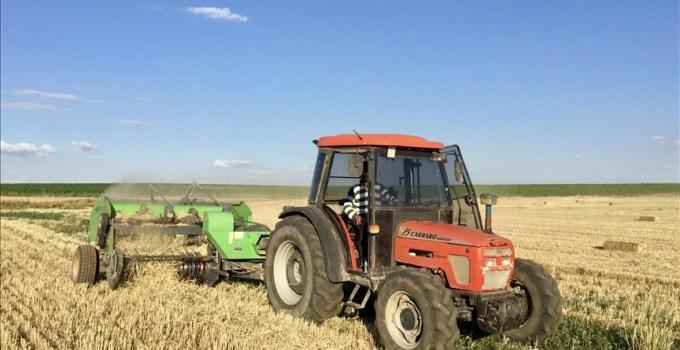 Tahıl ve Sebzede Bu Yıl Üretimin Azalacağı, Meyvede Artacağı Tahmin Ediliyor
