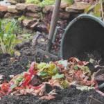 Organik gübre yapımında  hangi maddeler ne oranda kullanılmalıdır?