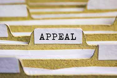 appellate attorneys filing an appeal