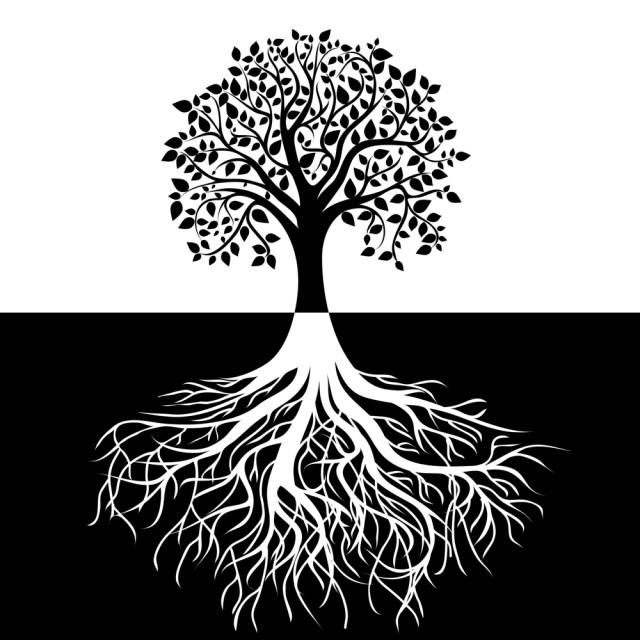 Etz Chayim - Tree of life