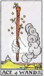 Ace_of_Wands
