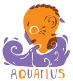 Aquarius, Water-bearer