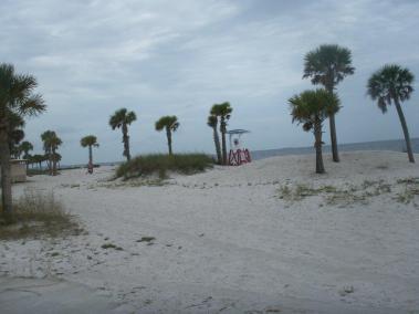beach-report-pict0144