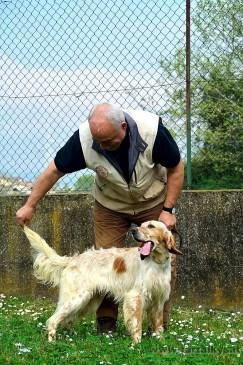 2015 04 18 cani 160 (Copia)