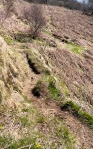 path to spar cave
