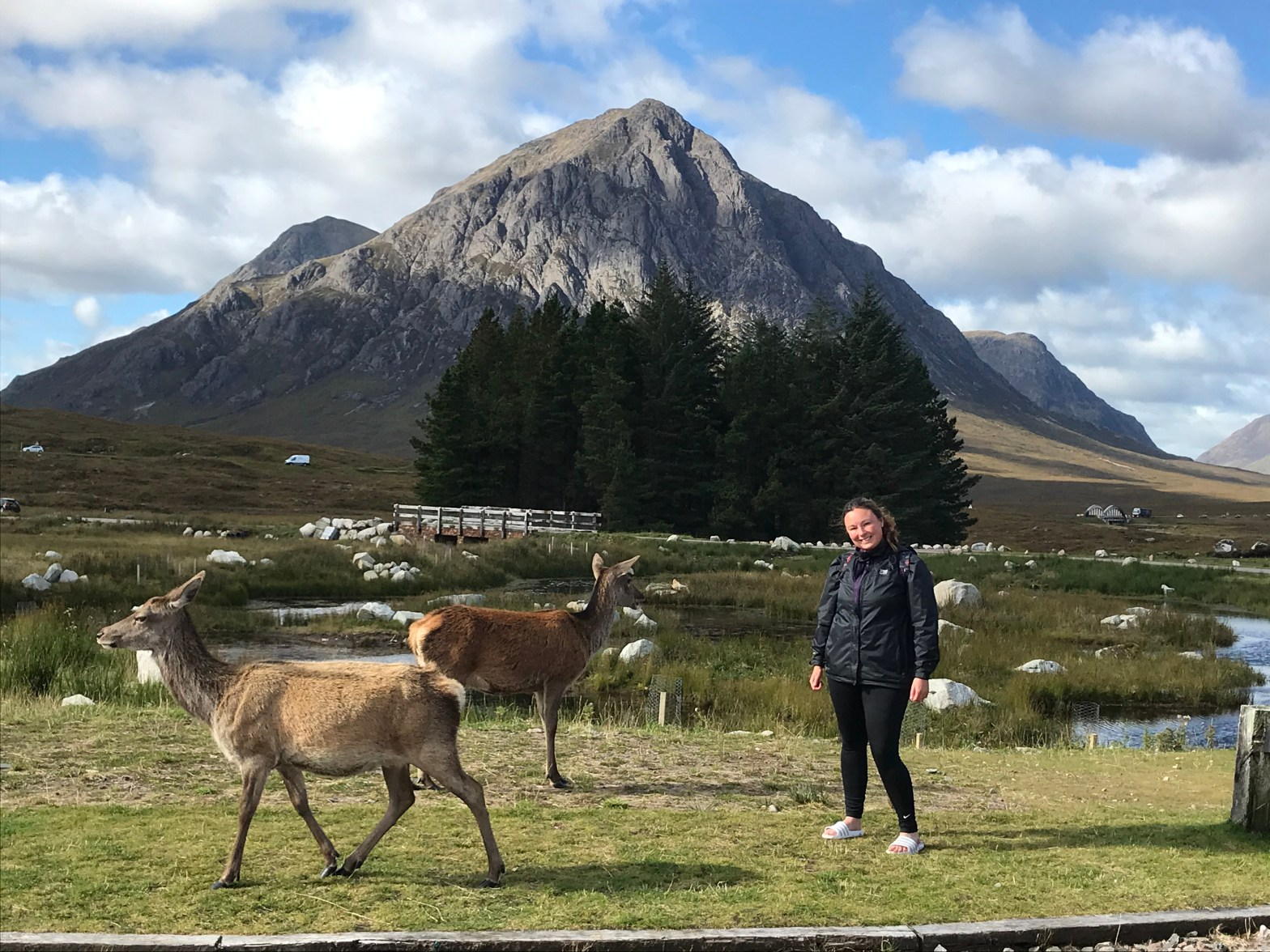 West highland way in Glencoe with deers