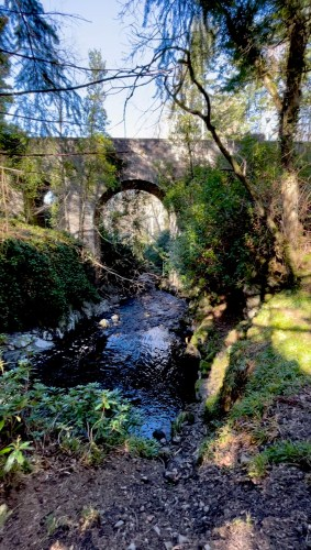 Scurry pool and bridge