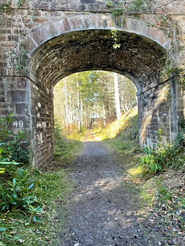 A bridge on the Dava way