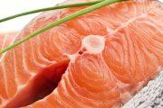 السمك غذاء الدماغ
