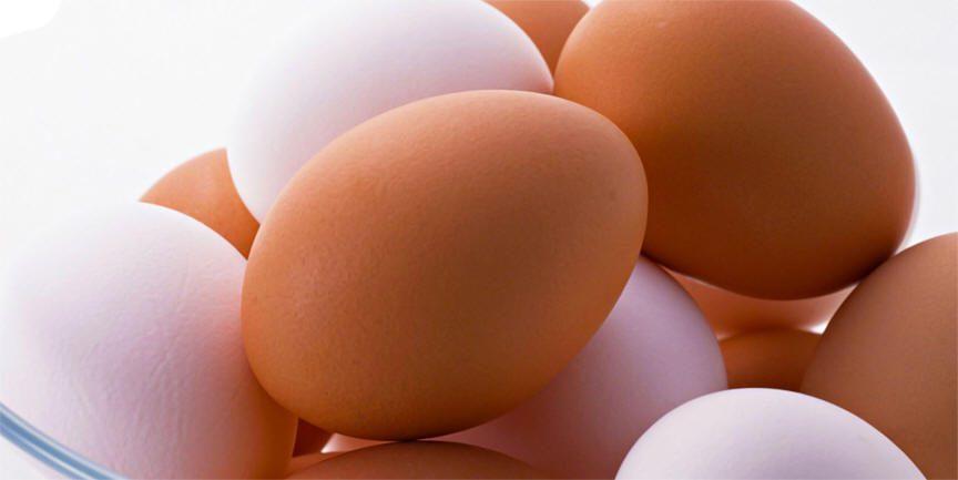 البيض  وفوائدة