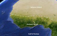 غابات غربي أفريقيا تتكيف مع ظروف الجفاف
