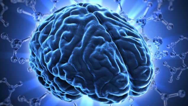 لماذا يصنع العلماء خلايا دماغية من الجلد البشري؟