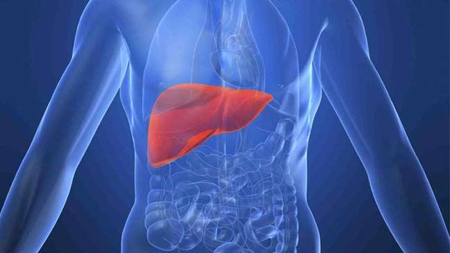طريقة جديدة لاكتشاف سرطان الكبد في مراحله الأولى