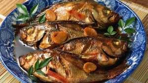 الأسماك مادة غذائية مفيدة للإنسان