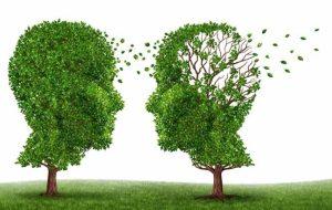 """مؤشرات علمية تثير احتمال انتقال مرض """"الزهايمر"""" بين البشر"""