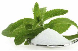 عشبة الستيفيا بديل طبيعي للسكر .. خالٍ من السعرات الحرارية وغني بعناصر غذائية مفيدة