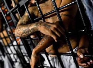 يأكلون لحوم زملائهم ويصطادون الثعابين.. اكتشف أخطر السجون في العالم؟