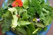 اكتشاف سكر مفيد في الخضروات الورقية