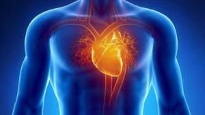 لاصقة قلب الكترونية يمكن أن تغني عن زراعة القلب