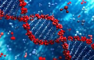 """العلماء يعثرون على """"جينات الموت"""""""