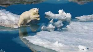 ذوبان الجليد في القطب الشمالي يدق ناقوس الخطر