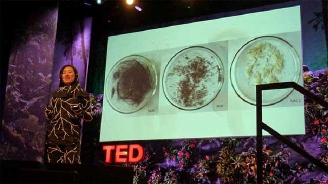 كفن من الفطريات يلتهم جسد الإنسان بعد الموت