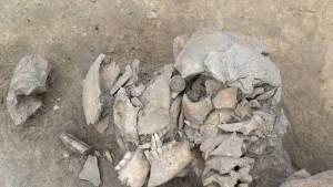 هياكل عظمية بقايا مجزرة في فرنسا منذ 6 آلاف عام