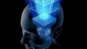 العلماء يكتشفون آلية عمل ذاكرة الإنسان