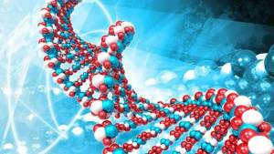 مسرّع جسيمات يكشف أسرار الحمض النووي