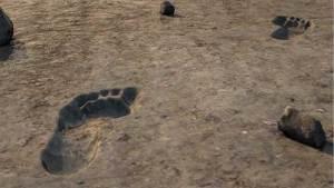 هربا من الجحيم.. اكتشاف آثار أقدام بشرية نادرة عمرها 20 ألف عام