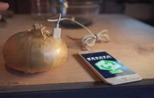 طريقة مذهلة لشحن الهاتف المحمول بواسطة بصلة عادية
