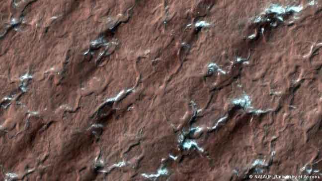 علماء هواة يكشفون سر عناكب المريخ