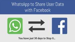 ألمانيا تمنع فيسبوك من جمع بينات مستخدمي واتس أب