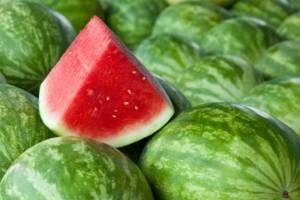 إليكم طريقة لحفظ البطيخ الأحمر لمدة ستة أشهر