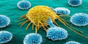 اكتشاف جزيئات كيميائية تقتل خلايا سرطانية