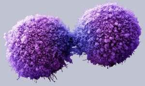 استخدام الفيروسات لعلاج السرطان