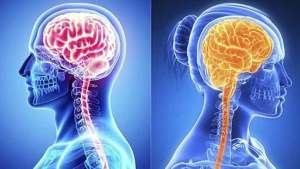 أيهما أقوى ذاكرة الرجل أم ذاكرة المرأة؟