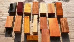 العلماء الروس يستخدمون أخشابا مُعدّلة لبناء الأبراج