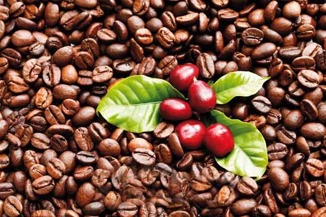 القهوة قد تحد خطر الإصابة بسرطان البروستاتا