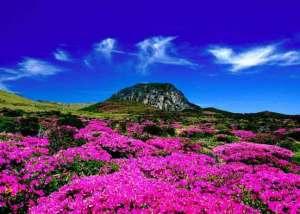 جزيرة جيجودو في كوريا الجنوبية