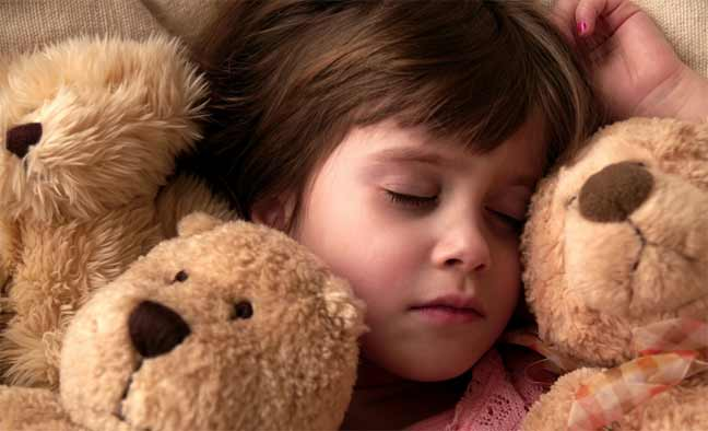 العلماء يكشفون سبب نوم البشر والكائنات الأخرى