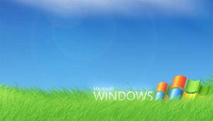 مايكروسوفت ويندوز