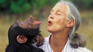 ما الفرق الجوهري بين الإنسان والحيوان