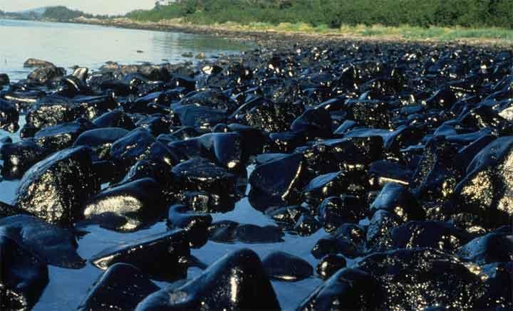 تلوث النفط