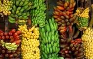 ماعلاقة لون الموز بفائدته