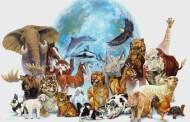 حيوانات تراوغ الموت وتخدع الشيخوخة