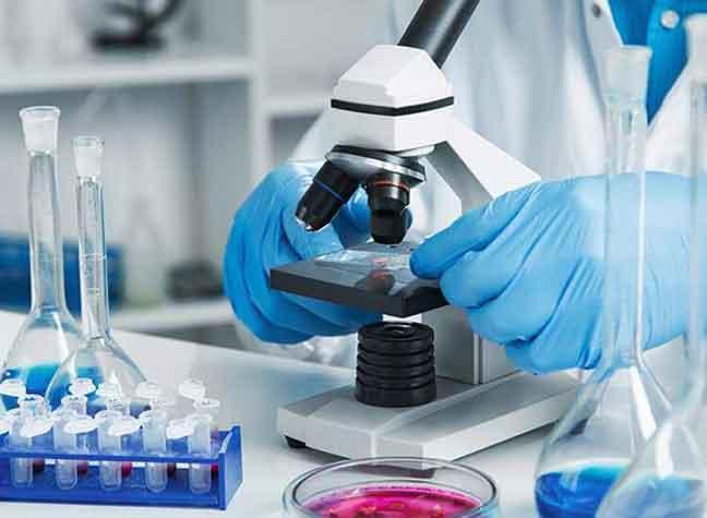 بحث هام يكشف كيف انتشرت الأوبئة والأمراض القديمة