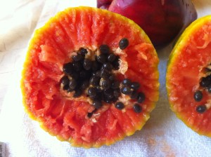 The papaya. It was just short of being overripe.  I did try ome of the seeds.  They taste like raw radishes.