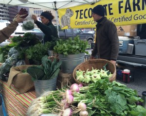 Turnips and Sorrel from Tecolote Farm.