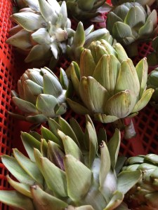 Not my favorite vegetable, but I bought some artichokes anyway. I thought, what the hell.